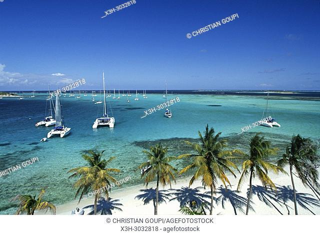 Jamesby islet, Tobago Cays, Grenadines islands, Saint Vincent and the Grenadines, Winward Islands, Lesser Antilles, Caribbean Sea