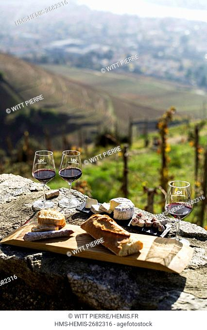 France, Drome, Tain l'Hermitage, Rhone valley, Seen on Tain since the hill and the vineyard of Hermitage, wine tasting