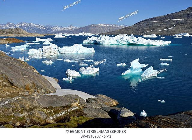 Icebergs drifting in Tasiilaartik Fjord, Kalaallit Nunaat, East Greenland, Greenland