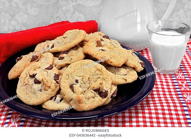 A batch of chocolate chip walnut cookies on a plate with a glass of milk