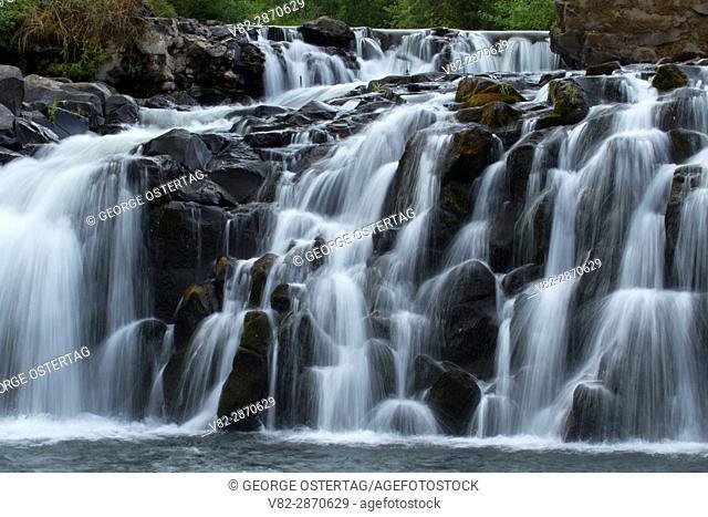 Scotts Mills Falls, Scotts Mills County Park, Oregon
