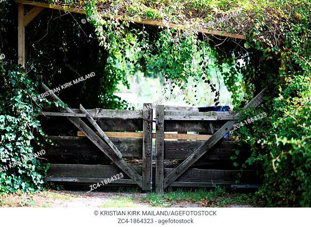 Wooden adventurous garden gate. Scandinavia