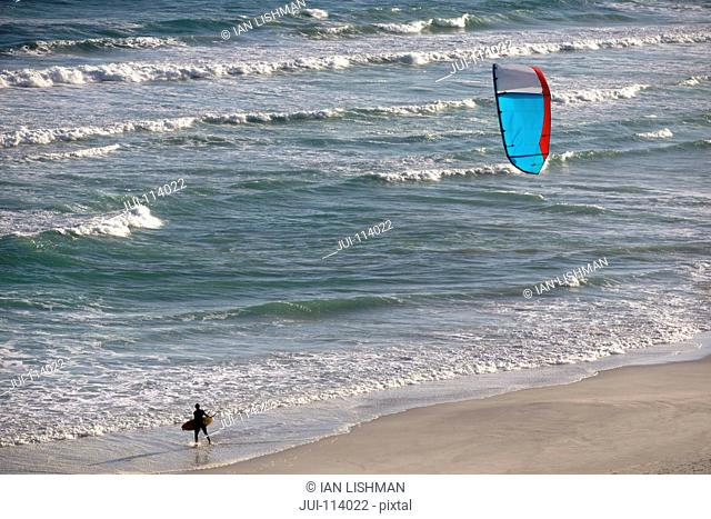 Kiteboarder carrying kiteboard along sunny windy ocean