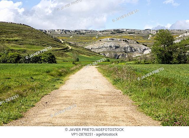A narrow road leads to Rebolledo de la Torre. World Geopark Las Loras. Burgos. Castilla y León. Spain