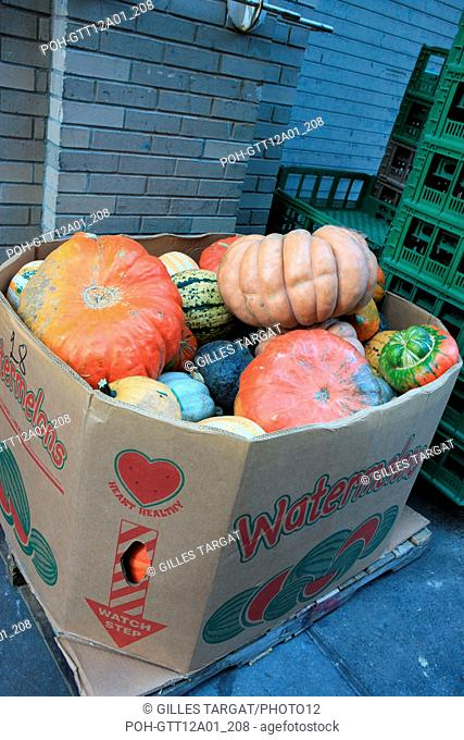 usa, state of New York, NYC, Chelsea, citrouilles, halloween, Photo Gilles Targat