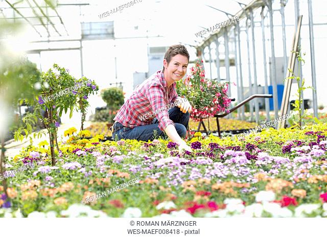Female gardener working in greenhouse