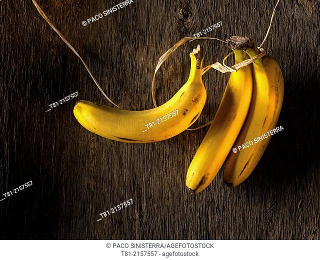 Still life of bananas and old wood