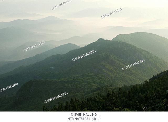 Morning haze in the Appalachian Mountains, International Biosphere Reserve, North Carolina, USA