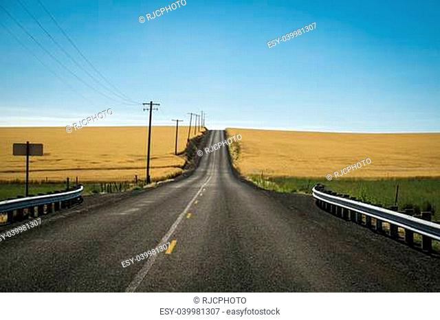 Road through wheat fields ready for harvest in Washington State