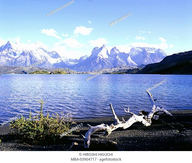 Chile, Patagonia, Torres Del Paine national-park, brine Pehoe shores root South America Latin America, destination, sight, nature, landscape