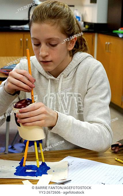 Middle School Girl Working on Science Experiment, Wellsville, New York, USA