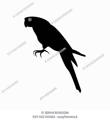 Parrot it is black color icon