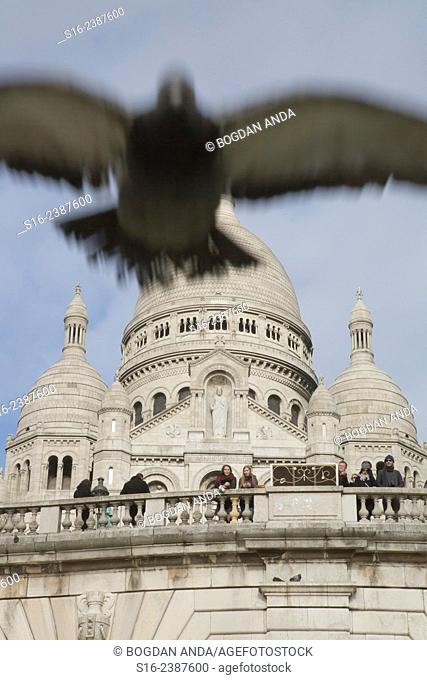 Paris, France, Montmartre - Sacre-Coeur Basilica with flying pigeon in the foreground