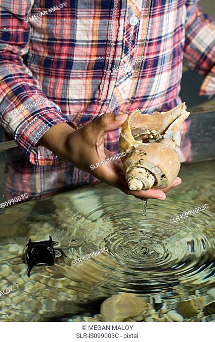 Girl holding sea shell in aquarium