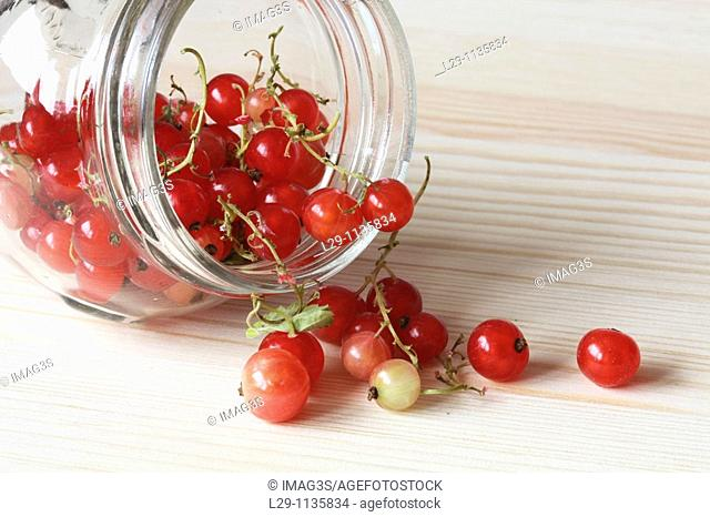 Redcurrants in a jar