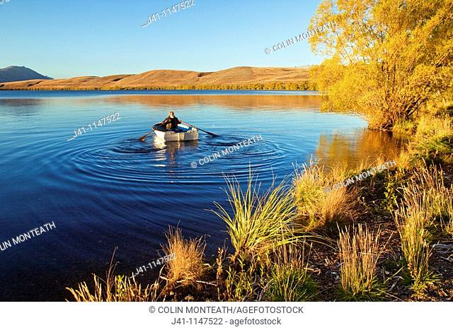 Trout fisherman rows out into Lake Alexandrina Wildlife Refuge just after dawn, no engines allowed on lake, Mackenzie country, Canterbury, New Zealand