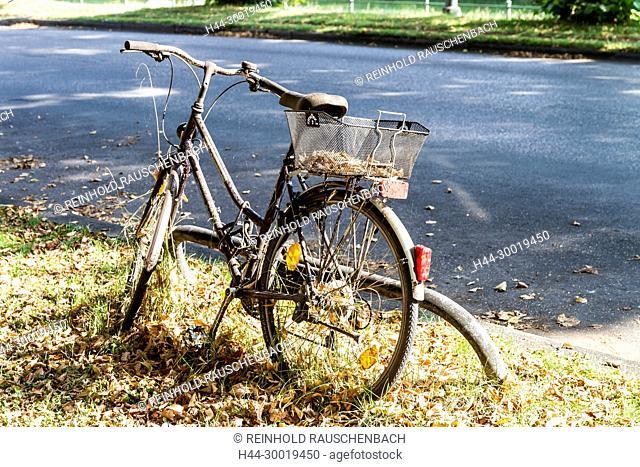 Am Straßenrand ins Gras eingewachsenes abgestelltes Fahrrad mit Herbstlaub bedeckt
