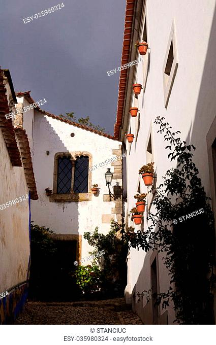 Medieval houses in the ancient city of Obidos, Portugal