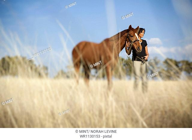 A woman leading a horse on the halter through the long grass in a field