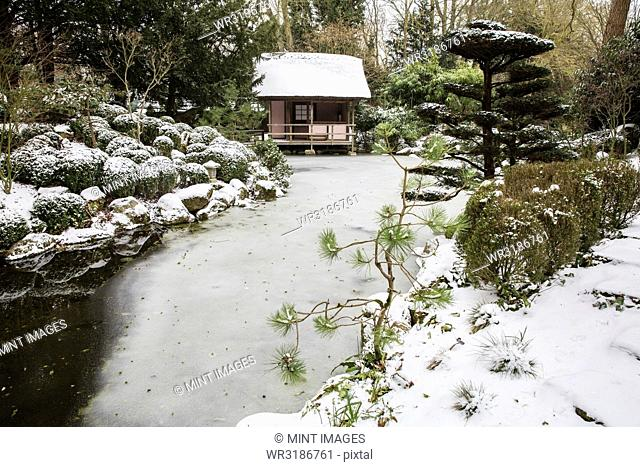 A small tea house in a Japanese style garden, traditional planting of evergreens and ice sheets on the water of the pool