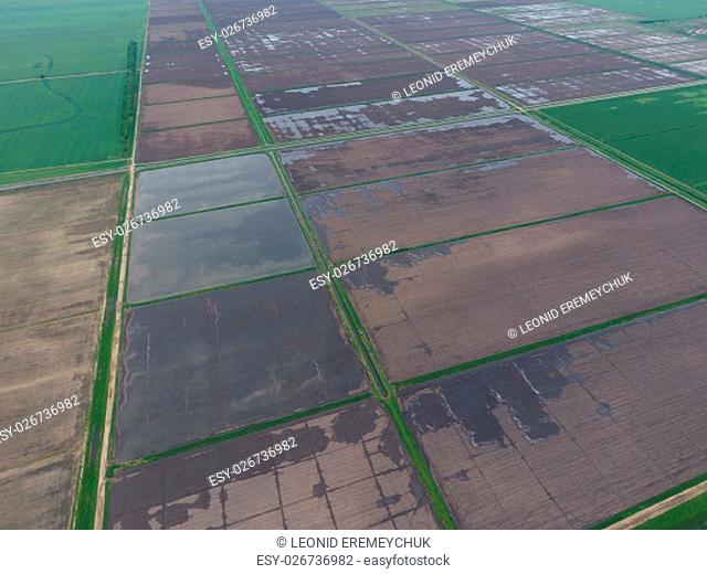 Flooded rice paddies. Agronomic methods of growing rice in the fields. Flooding the fields with water in which rice sown. View from above