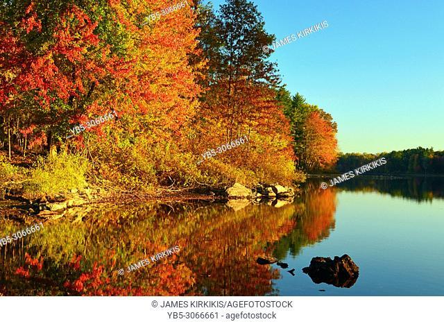 Autumn Calm on a New England Lake