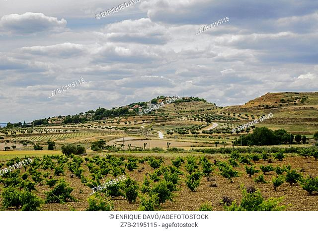 A vision of the country of Chinchon, Madrid province, Spain