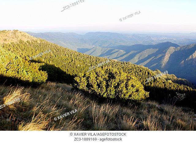 In the foreground, the mountains of Ardèche and in the background the chain of the Alps from Mont Aigoual 1576m, meteorological observatory