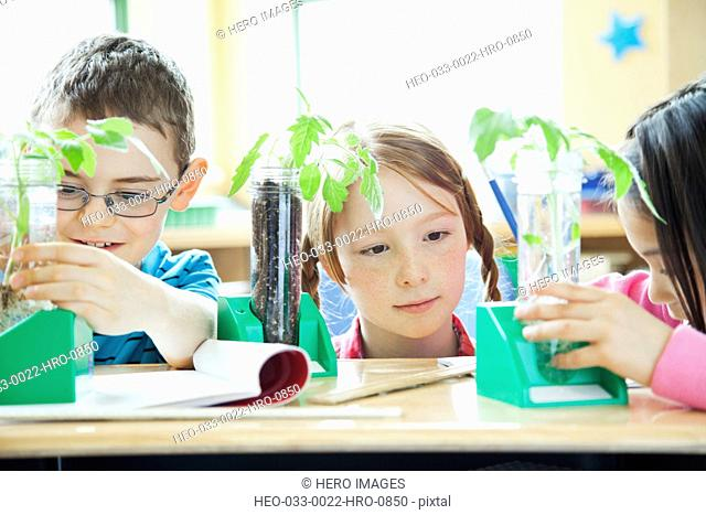 elementary students discovering plants