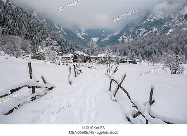 Mello valley, Valtellina, Lombardy, Italy