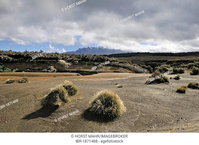 Volcanic landscape at Mount Ruapehu, Tongariro National Park, UNESCO World Heritage Site, Turangi, North Island, New Zealand