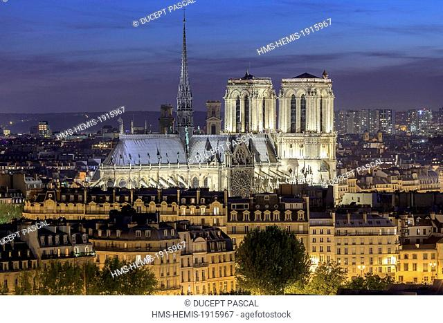 France, Paris, the Notre Dame cathedral on the Ile de la Cite illuminated at night