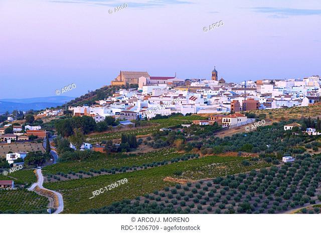 Montilla, Cordoba province, Montilla-Moriles area, Andalusia, Spain