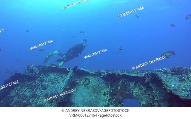Freediver dives on the wreck SS Thistlegorm, Red Sea, Sharm el Sheikh, Egypt, Sinai