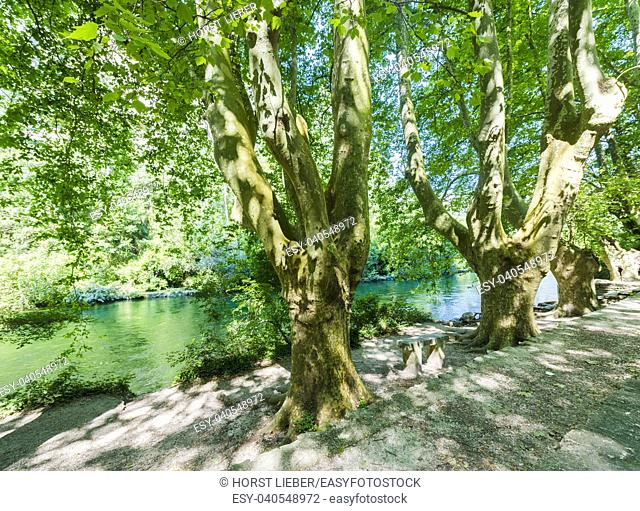 The romantic river Sorgue in Fontaine de Vaucluse. Vaucluse, Provence, France, Europe
