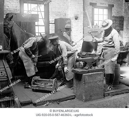 Army Blacksmiths Shoe Horses 1919