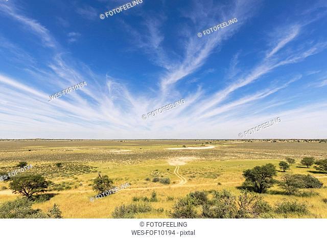 Africa, Botswana, Kgalagadi Transfrontier Park, Kalahari, Polentswa Pan and waterhole