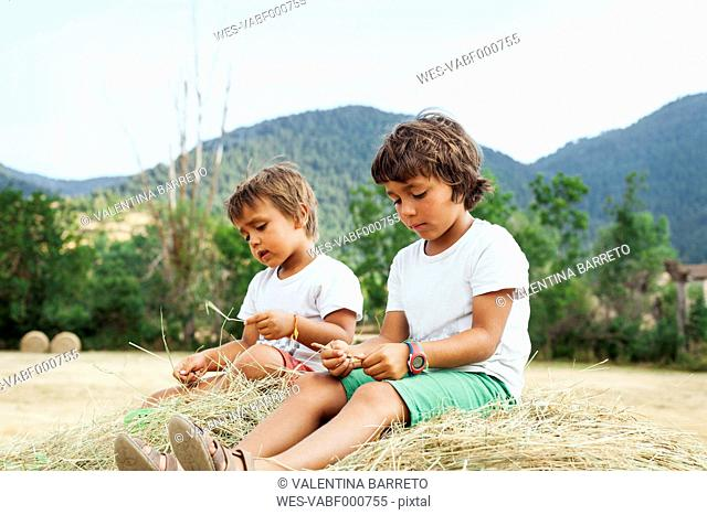 Two little boys sitting on bale of straw