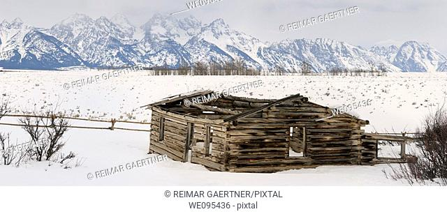 Panorama of the Teton Range mountains in Wyoming with collapsed Shane Cabin in winter