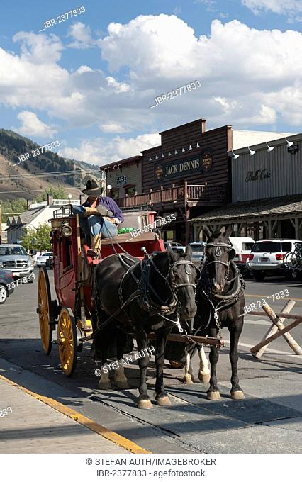 Coachman dressed as a cowboy, historical stagecoach with two horses, Jackson Hole, Wyoming, Western United States, United States of America, North America
