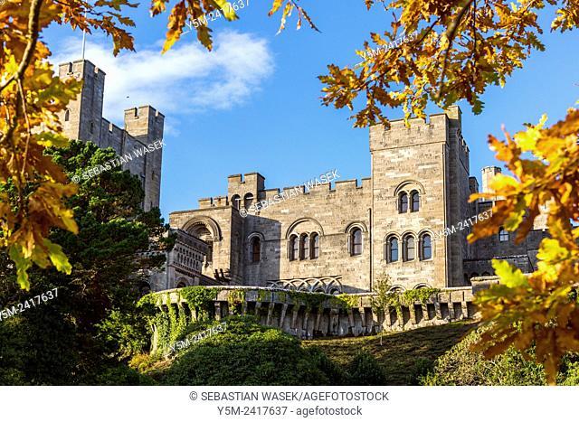 Penrhyn Castle a country house, Llandegai, Bangor, Gwynedd, North Wales, United Kingdom, Europe