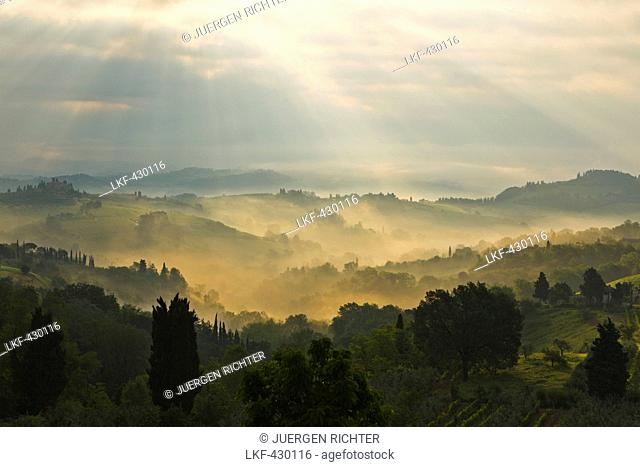 Fog at sunrise, landscape near San Gimignano, province of Siena, Tuscany, Italy, Europe
