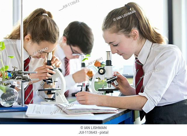 High school students conducting scientific experiment at microscopes in biology class