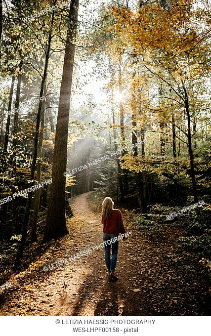 Germany, Black Forest, Sitzenkirch, woman walking in autumnal forest