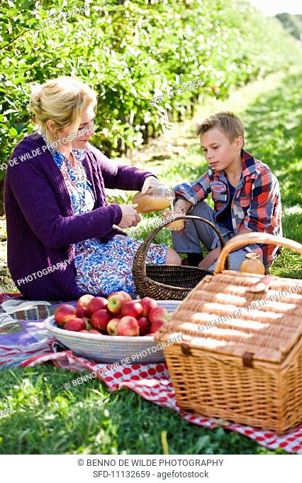 A picnic in an apple orchard