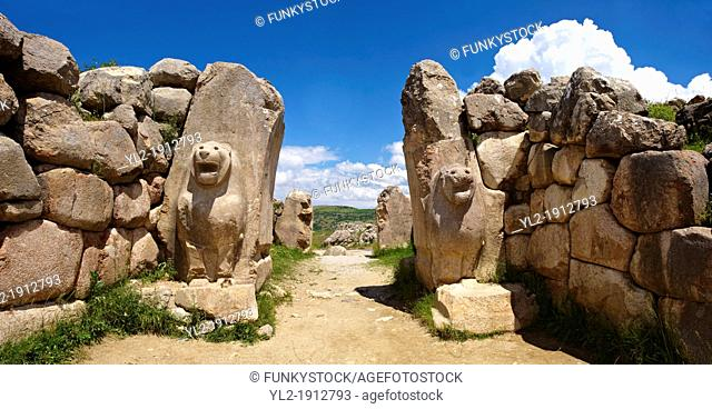 Photo of the Hittite releif sculpture on the Lion gate to the Hittite capital Hattusa 3