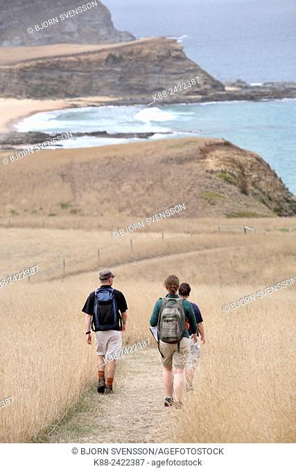 Bushwalkers at Cape Bridgewater. Victoria, Australia