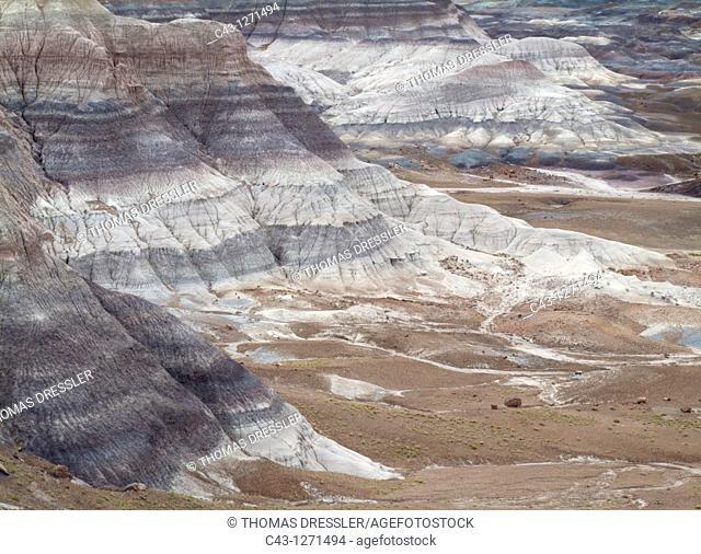 USA - Badland hills of bluish bentonite clay at Blue Mesa  Petrified Forest National Park, Arizona, USA