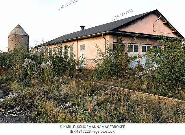 Hochbunk high-rise bunker and vacant shed, overgrown terrain, former Ausbesserungswerk repair shop of German Railways, vacant, closed in 2003, Duisburg-Wedau