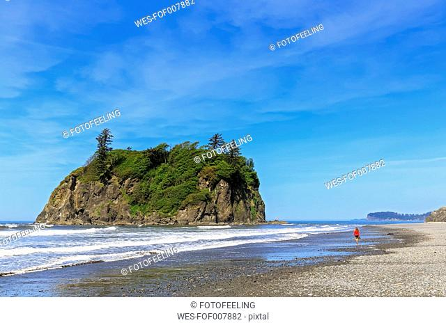 USA, Washington State, Olympic Peninsula, Olympic National Park, Pacific Ocean, Tourist at Rubby Beach